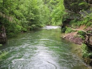 Vintgar Gorge - Radovna River